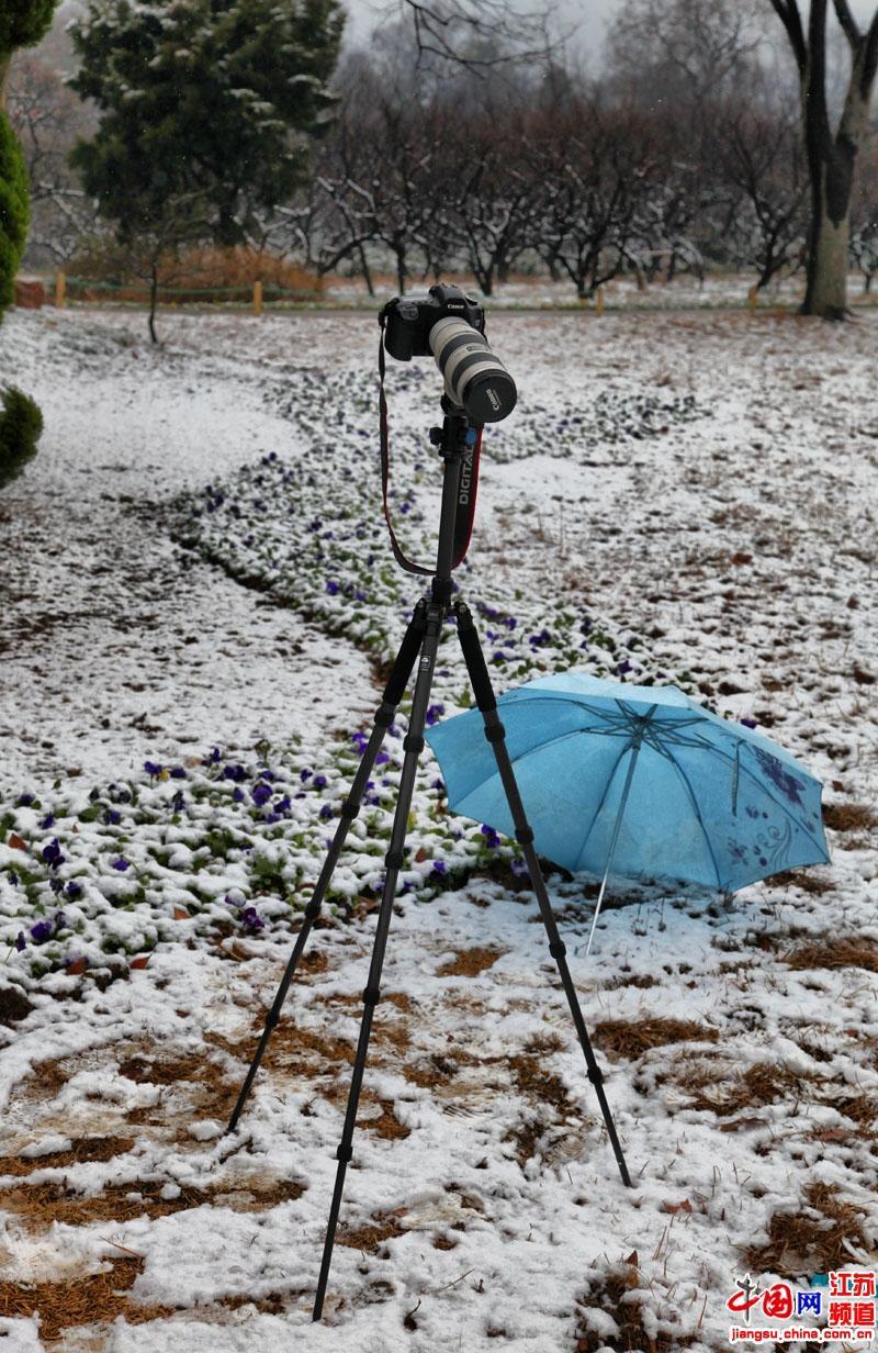 """被""""冷落""""在大雪中的相机(摄影 郑鹏)"""