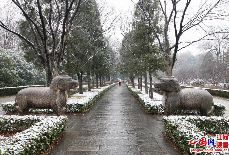 大雪中的石象路仍然是那样的宁静(摄影 郑鹏)