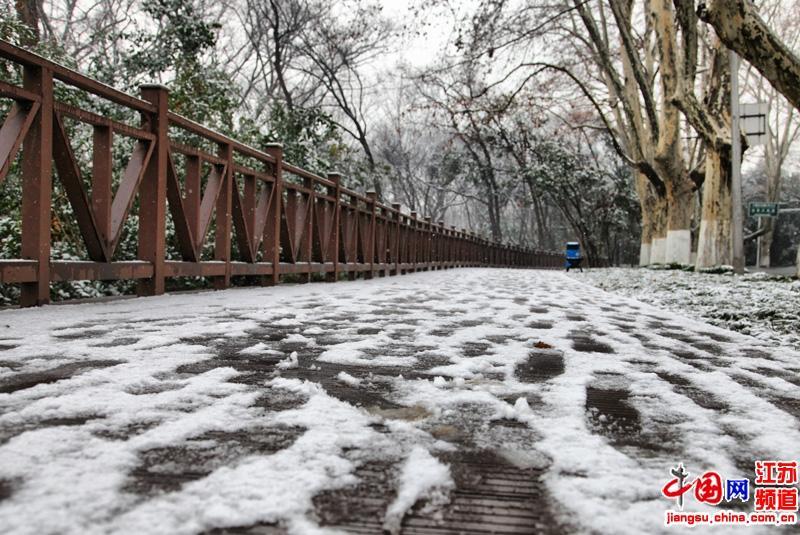 中山陵景区中雪中板桥(摄影 郑鹏)