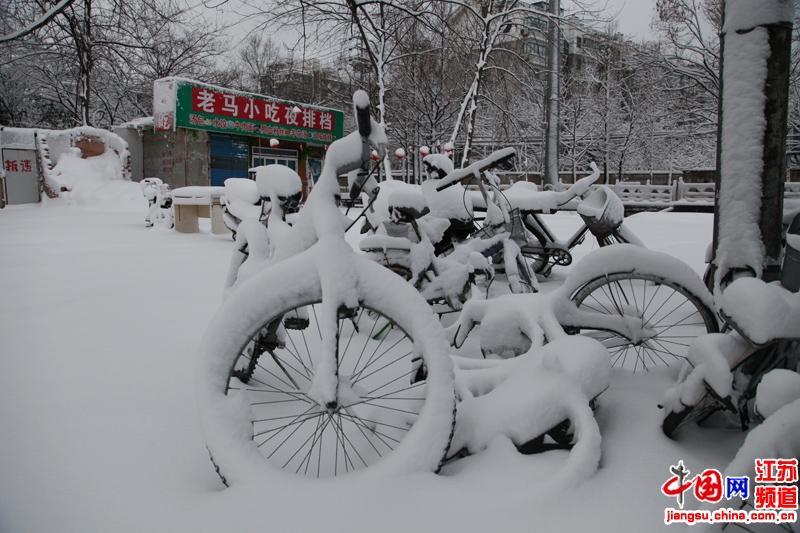 高清组图:南京蛇年的第一场大雪 瑞雪兆丰年 摄影 郑鹏