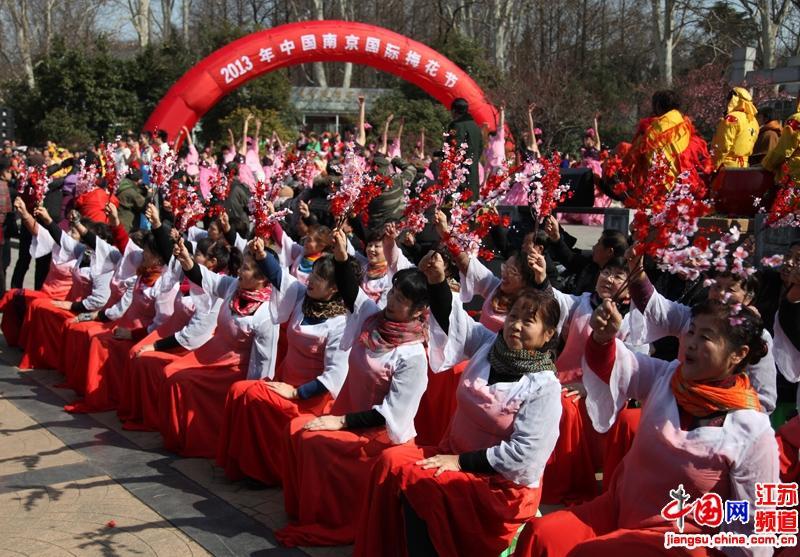 梅花节当天活动