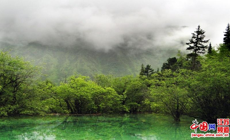 文化小学江俞辰摄影作品《水之韵》