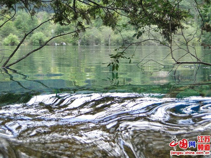 文化小学江俞辰摄影作品《水之韵》一