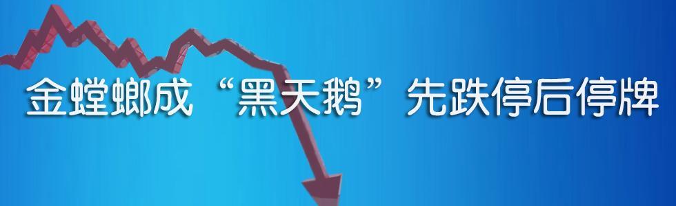 """江苏金螳螂遭遇""""黑天鹅"""" 朱兴良被查"""