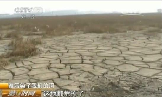 霍元甲故里遭嚴重化工污染:魚蝦盡死居民出逃(視頻/圖)