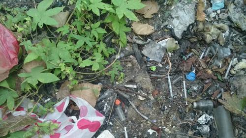 卫生院被指视法规不顾,将医疗废物随意散落在河边,污染周边环境和河流