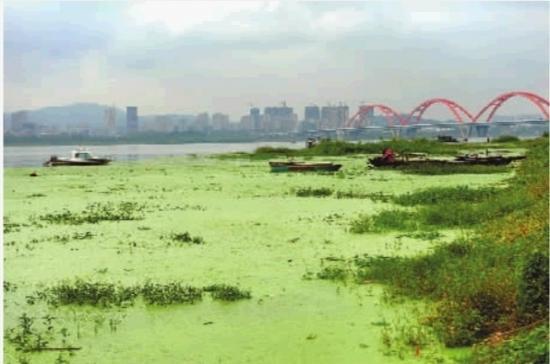 """作出""""举全市之力打造浏阳河文化旅游产业带""""的指示"""