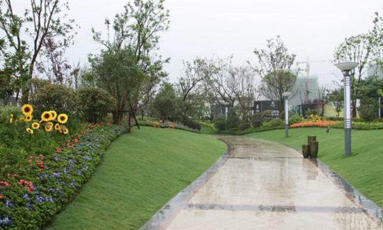 蚌埠:去年城区新增11个街头绿地游园图片