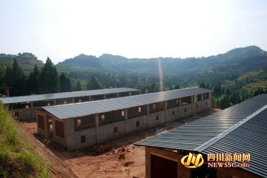 营山实施 产业兴县 战略 打造 双百羊果产业环线