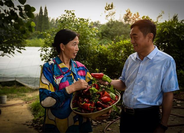 江苏仪征:民族村的美丽新转变