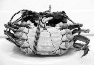大闸蟹攻略:公母有啥讲究 如何正确挑选