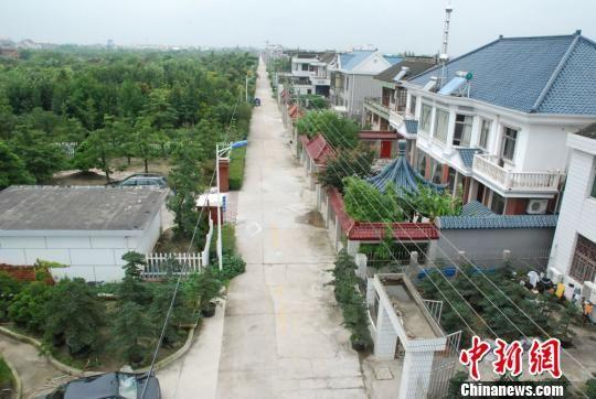 如皋市如城街道顾庄社区顾家庄如派盆景驰名中外,图为风景秀丽的村庄.