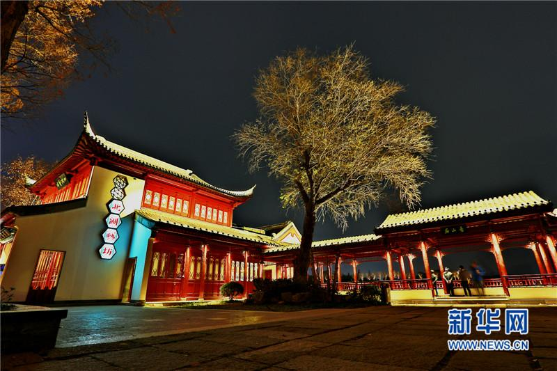 南京 以灯为笔 画出金陵玄武湖 四季