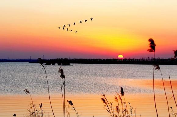 """江苏句容赤山湖正式成为""""国家湿地公园"""""""