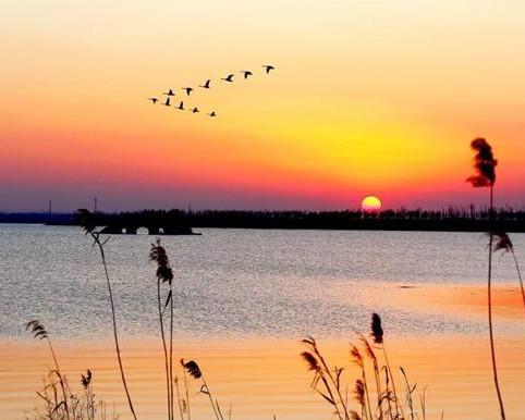 秦淮第一湖