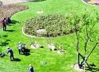 宿迁:加强绿地管护