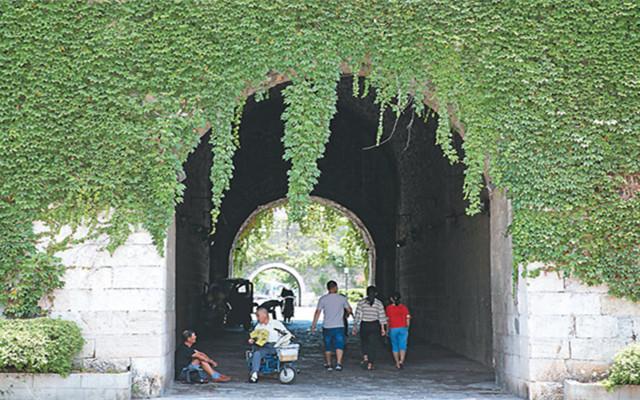 南京石城门瓮城上长满爬山虎 犹如绿色城堡