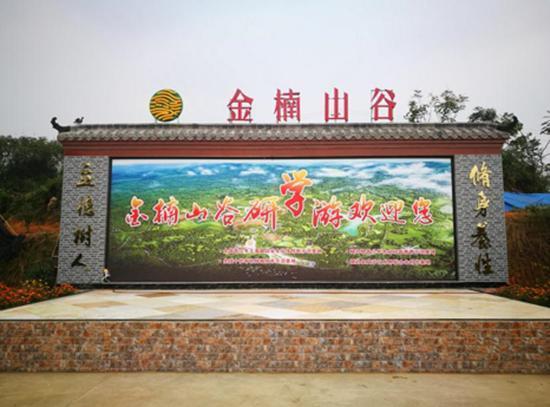 犍为县特色农产品报道:金楠山谷打造农林综合体