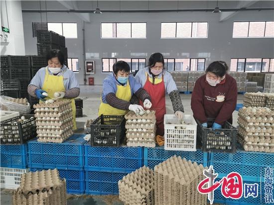 """海安县婷婷农副产品有限公司:""""蛋""""定生产助民强体阻疫"""
