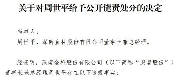 深南股份董事长周世平被公开谴责 此前曾因违规减持收监管函