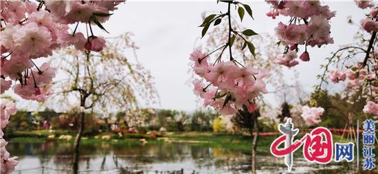 溧水三叶梦华苑 你心中的花园