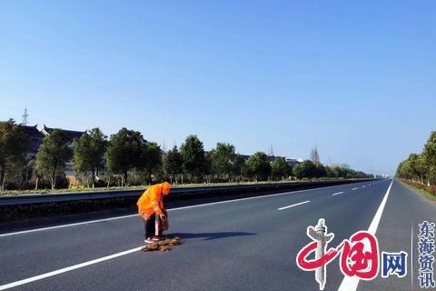 靖江公路站净化国省干线环境迎国检