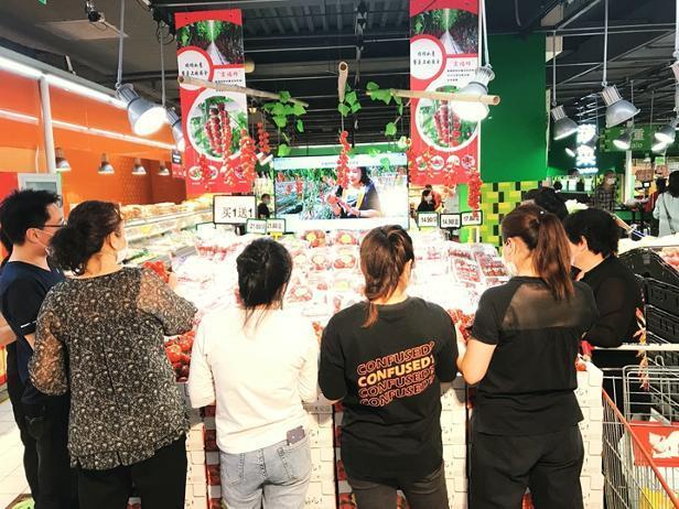 宏福柿试水直播超5万人观看 与家乐福联手打通线上线下营销新路径