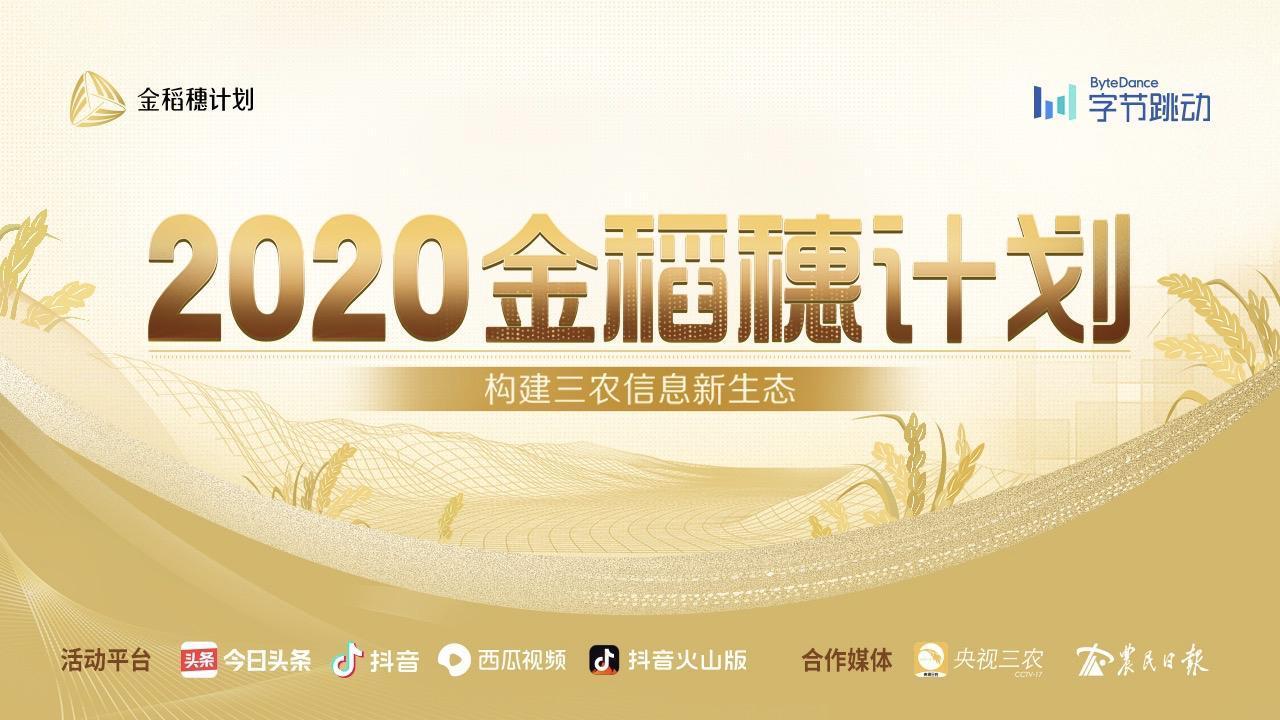 """2020年""""金稻穗奖""""入围名单公布""""乡村胡子哥""""等38名创作者上榜"""